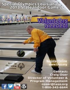 2013 SIG Volunteer Flyer